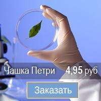Чашки Петри Купить в СПБ